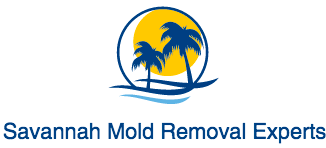 Savannah Mold Removal Experts